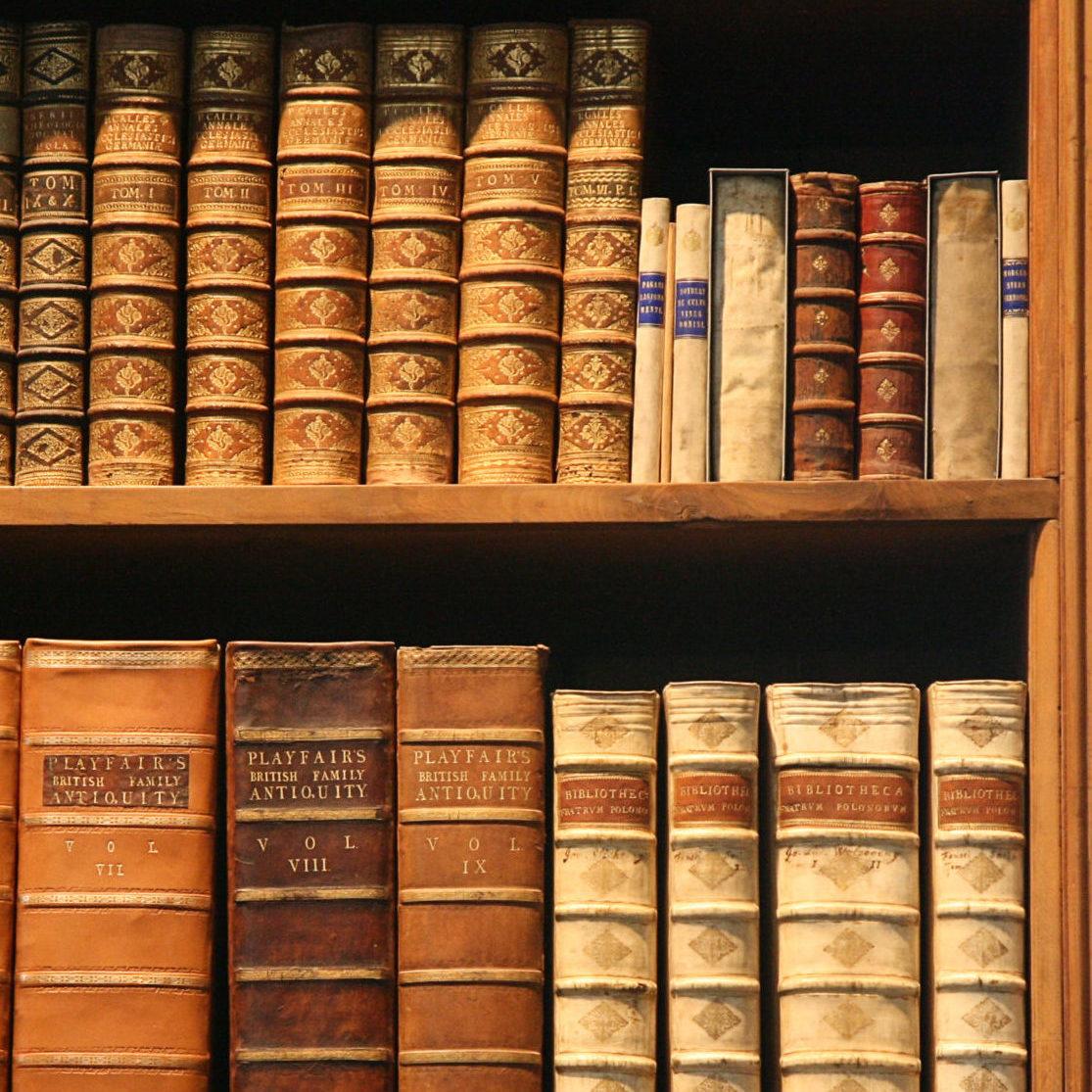 Bookshelf_viejos